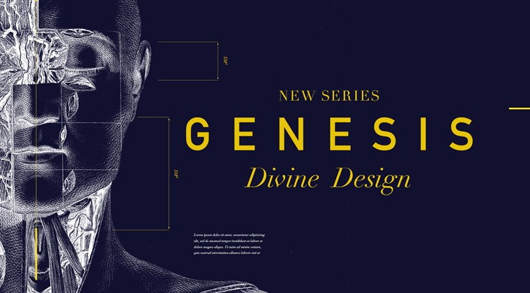 Genesis: Divine Design banner image Teaching Series
